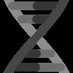 Nye behandlingsmetoder for Duchenne muskeldystrofi (DMD) og Spinal Muskelatrofi (SMA)