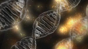 Nye tidlige forsøk på behandlingsmetode for Limb-Girdle R9 , nytt medikament for  Pompes sykdom, og litt om forskning på Friedreichs ataksi